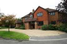 5 bed Detached property to rent in Kinghorn Park, Maidenhead