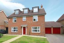 Detached home in Sturmer Court