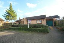 3 bed Bungalow for sale in Illingworth Place...