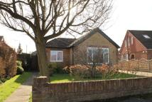 Detached Bungalow for sale in Jacobs Well, Guildford