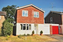 Detached home in Bury Hill