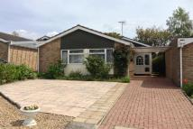 Bungalow for sale in Rowley Close, Brantham