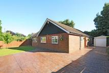 3 bed Bungalow in Oak Hill Lane