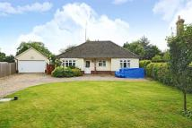 3 bedroom Detached property for sale in Old Norwich Road
