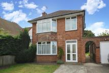 Detached property for sale in Crabbe Street