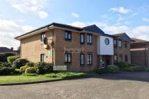 Flat for sale in Swan Court, Harwich Road...