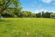 3 bedroom Bungalow for sale in Bowers Gifford