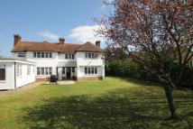 4 bedroom Detached house in Tye Green Cressing
