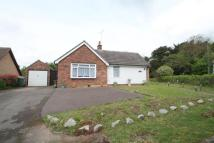 Castle Close Bungalow for sale