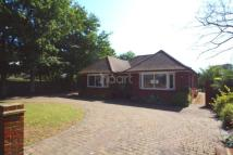 Bungalow for sale in Old Green Road