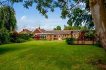 5 bed Bungalow for sale in Summerville Avenue...