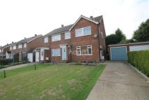 3 bedroom semi detached home for sale in Millfields, Danbury