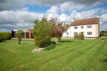 4 bed Equestrian Facility home in Pear Tree Lane, Fulstow...