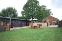 Equestrian Facility house for sale in Main Street, Horsington...