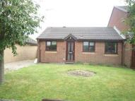 Bungalow to rent in Alexander Drive, Louth...