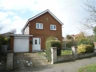 Detached house to rent in Elm Drive, Louth...