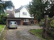 Detached house to rent in Kendal Avenue, Epping...