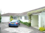 Detached Bungalow to rent in Park Avenue, Potters Bar...