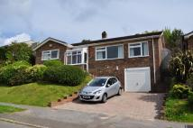 3 bedroom Detached Bungalow for sale in Springwood Road...
