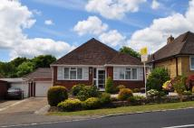 Detached Bungalow for sale in Ghyll Road, Heathfield