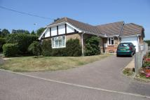 Detached Bungalow in Linden Gardens...