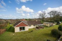 Detached Bungalow for sale in Foots Lane, Burwash Weald