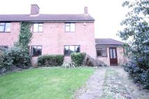 3 bed semi detached house to rent in CPO7313 CM11