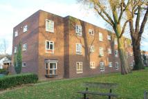 1 bed Studio flat to rent in Wickford, SS11