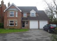 4 bed property to rent in Painters Pightle, Hook