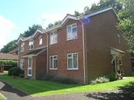 2 bed Flat in Birch Grove, Hook