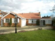 3 bedroom Detached Bungalow in Lutterworth Road, Blaby...