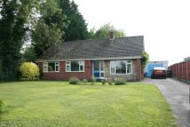 Little Ellingham Detached Bungalow for sale