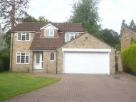 4 bed Detached house in Ripon