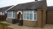 Detached Bungalow to rent in Cranfield