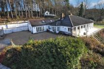 4 bed Bungalow for sale in CADSDEN...