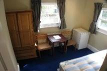 Studio apartment in St. Stephens Gardens...