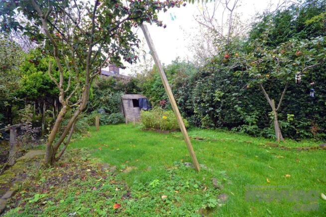 Back Garden (3).jpg