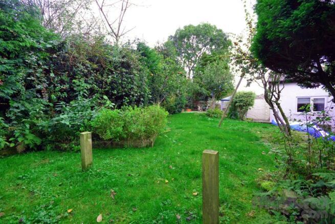 Back Garden (6).jpg