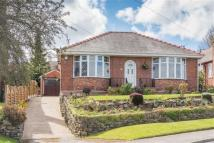Detached Bungalow for sale in Carr Road, Sheffield
