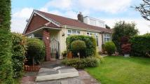 Semi-Detached Bungalow for sale in Gloucester Road...