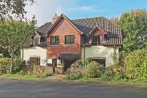 Tangle Wood Detached house for sale