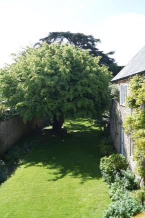 Garden With Tree
