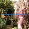 Split-Dalmacija home