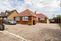 4 bed Detached Bungalow in LOWER AVENUE...