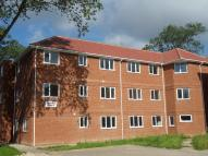 1 bed Ground Flat to rent in Bradley Court, LONG ROAD...