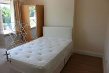 House Share in Arnold Road N15