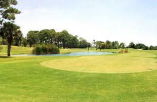 On a golf course?