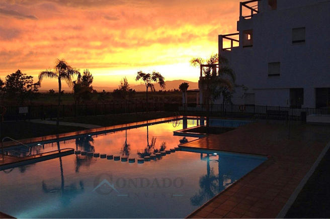 Pool by sunset