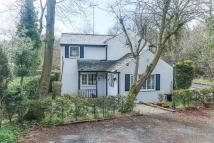 3 bedroom Cottage for sale in Holywell Lane, Rubery...
