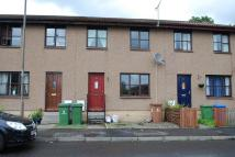 Terraced home to rent in Earls Court, Alloa...
